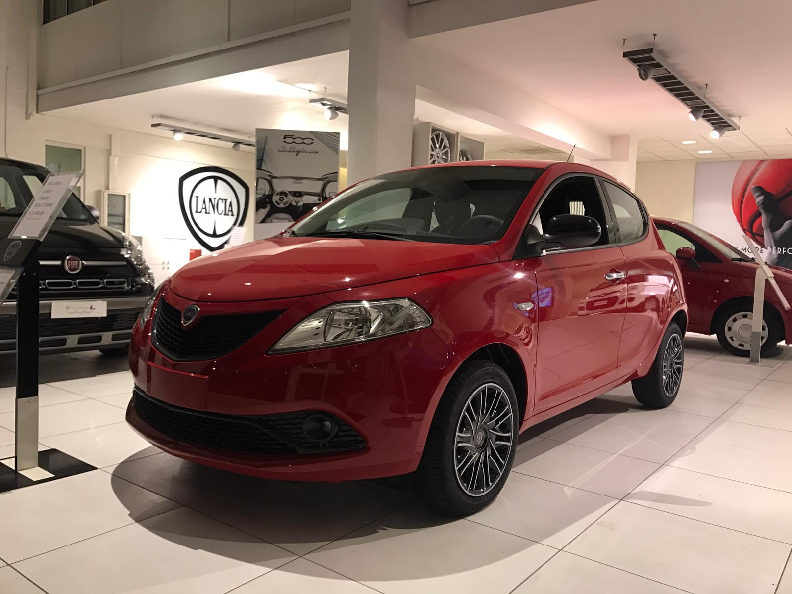 km 0 ypsilon gold 1